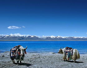 Namtso Lake 6 days Trekking Tour