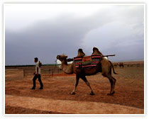 Traditional Ancient Silk Road Memorable Tours